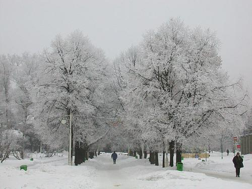Krynica in de winter -Poleninfo-